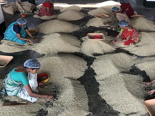 Indian Monsoon Malabar Aged Coffee Beans