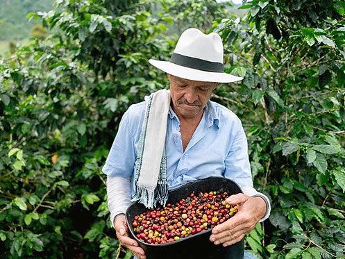 Columbia Red Bourbon - Las Margaritas