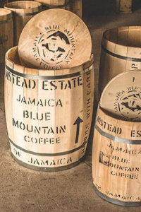 Jamaica Blue Mountain Grade 1 Flamstead Estate