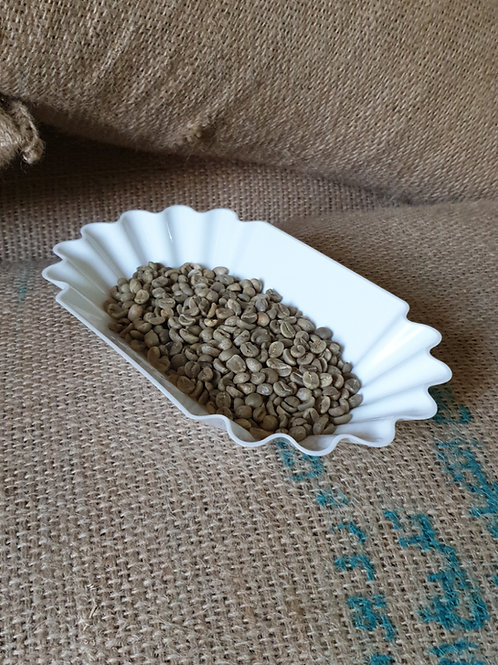 Coffee Cupping Sample Tray Oval Tray for Green/Roasted Coffee Beans