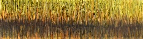 Marais verdoyants