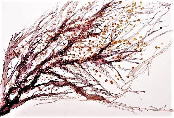 Branchages d'hiver