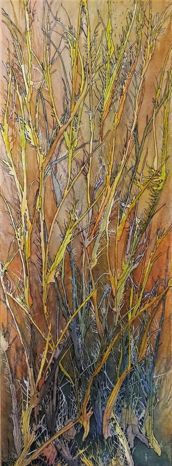 *VENDU* Buissons ardents