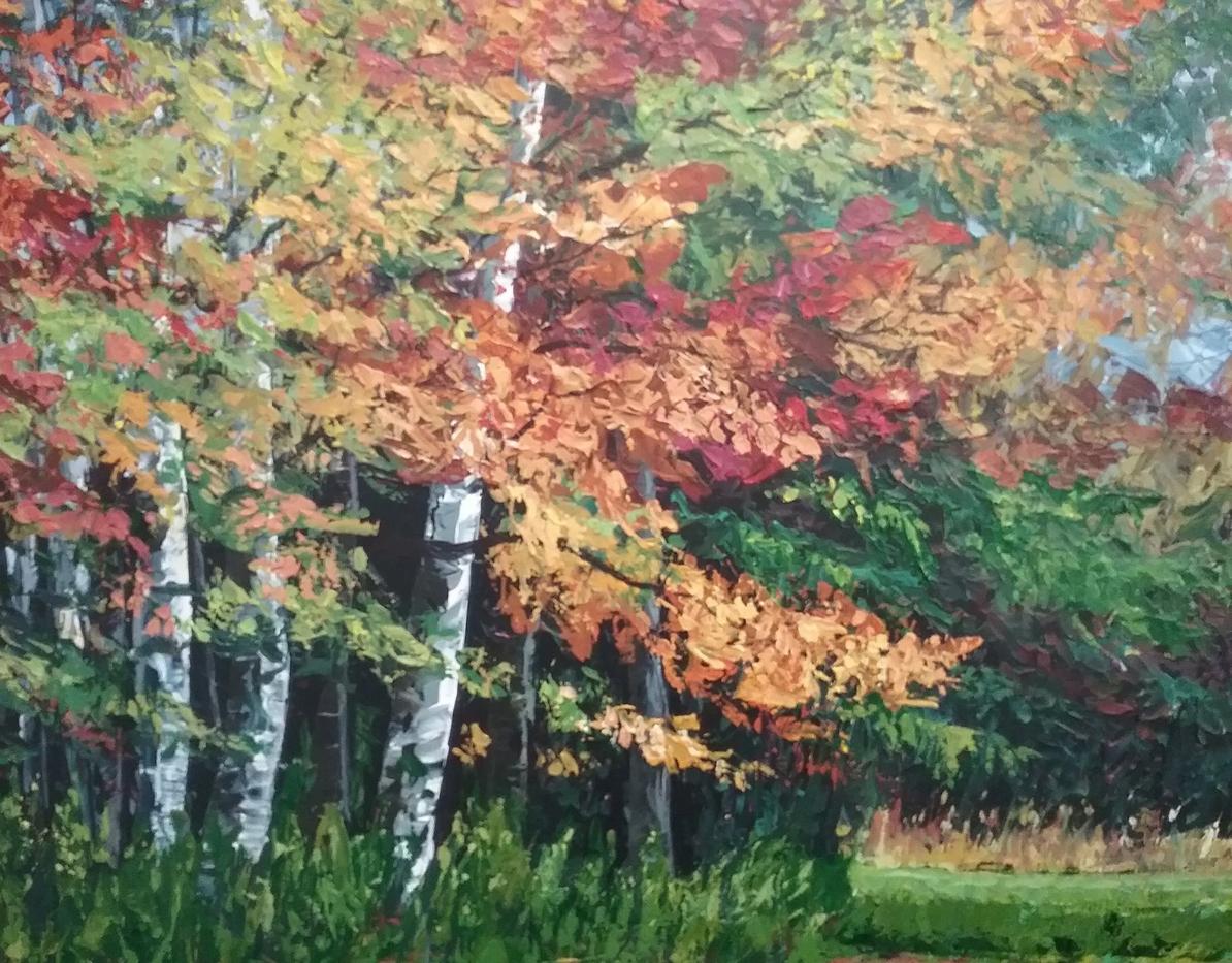 Maple Birch Field
