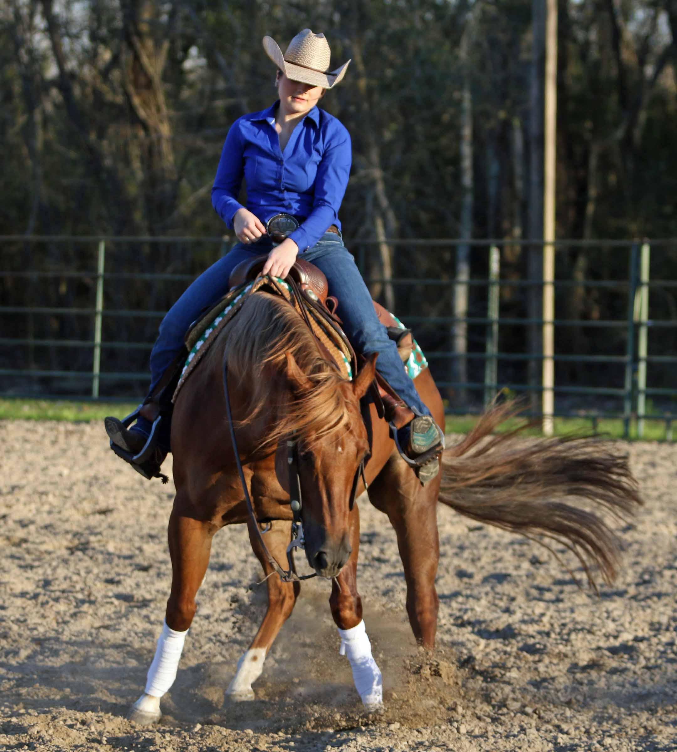 Shelby Reine - Equestrian Scholar