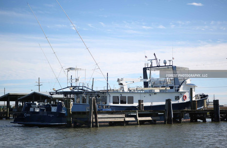 port_fourchon_visit1171.JPG