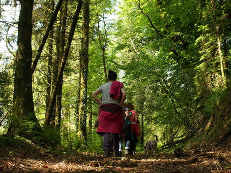 5 Reasons why a women's walking holiday could be perfect for you!