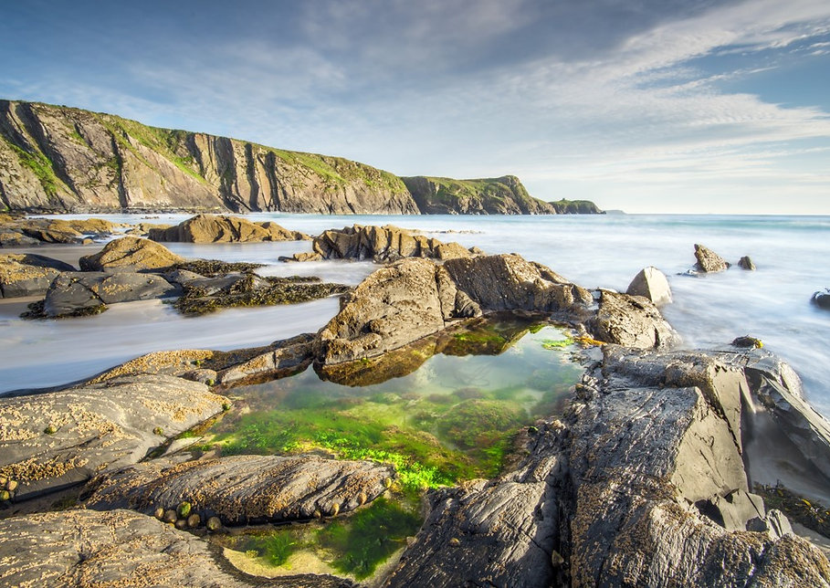 Top of the Woods Camping & Glamping Holiday – Pembrokeshire – Wales - UK - Dog Holiday 1