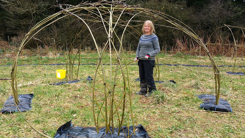 Michelle Cain planting the green gazebo