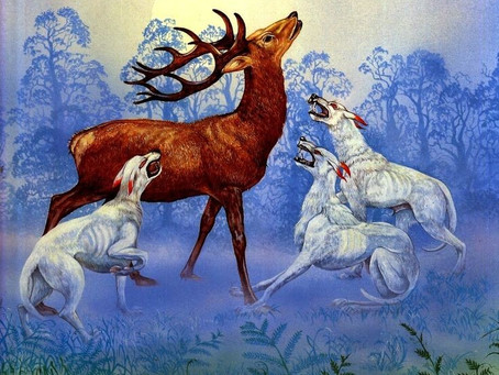 Campfire Stories - The legend of two kings, a stag hunt & cutting a deal!