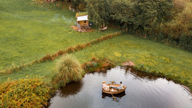 Top of the Woods - Eco Camping & Glamping - Pembrokeshire - Wales UK - One Cat Farm - Kingit