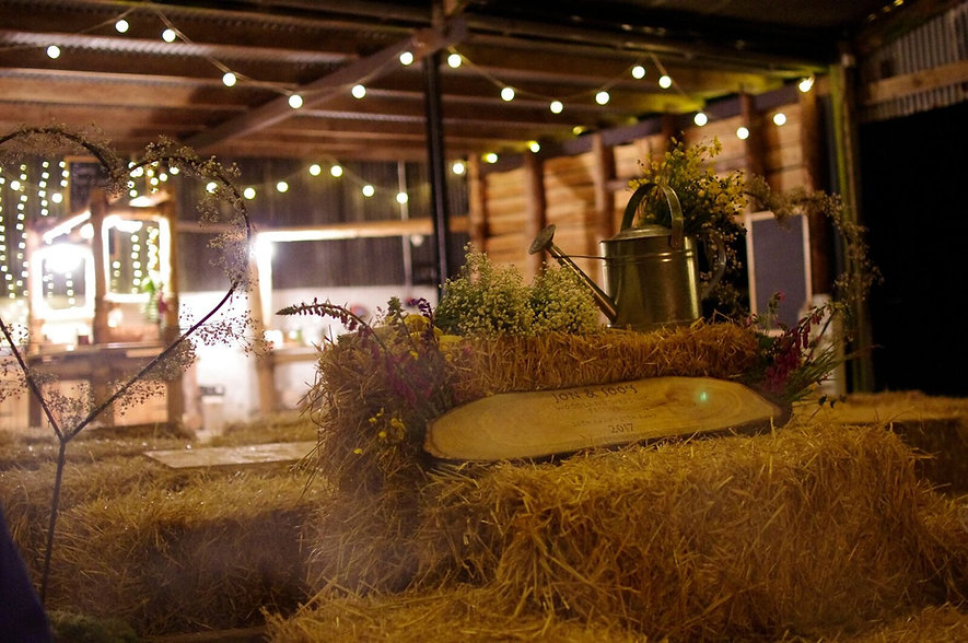Woodland Wedding Festival at Top of the Woods Camping Glamping Holidays Pembrokeshire