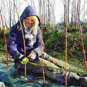 Michelle Cain planting willow