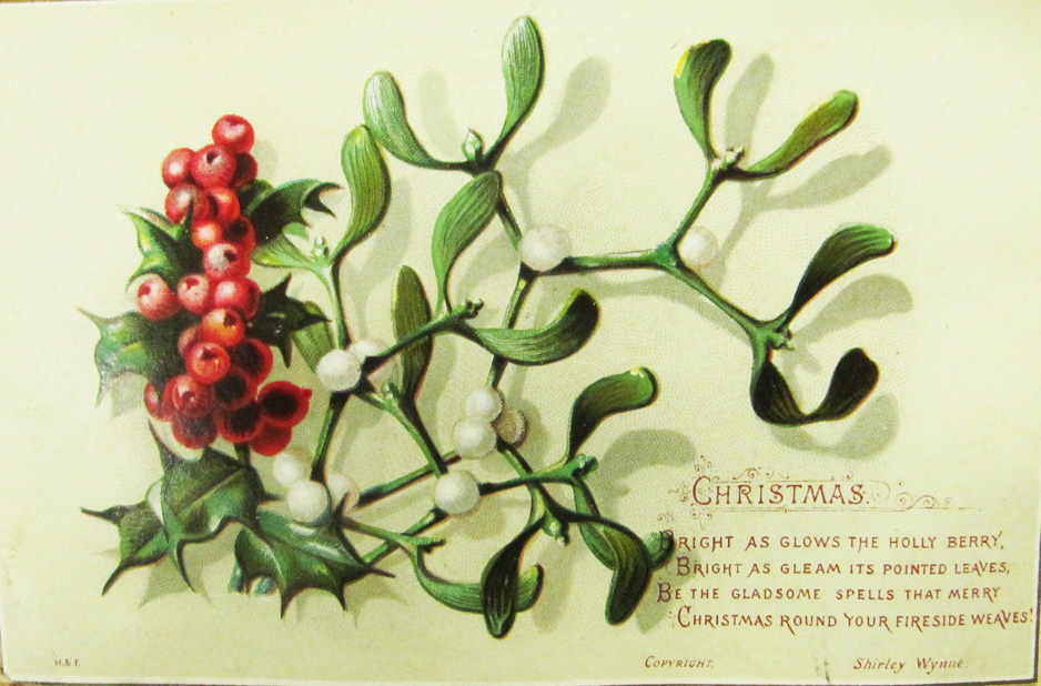 Mistletoe is also evergreen which represented life even in the darkest days