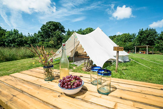 Top_of_the_Woods_Camping_&_Glamping_Holi