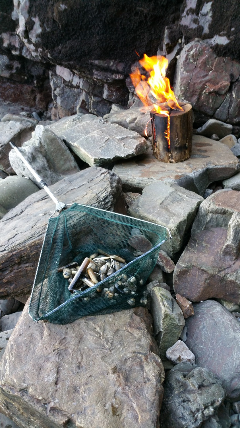 Swedish campfire log and our foraged items