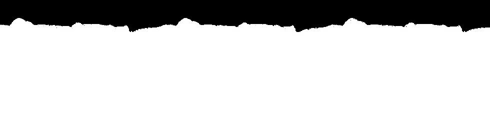 NP paper BKG Slider 4- white.png