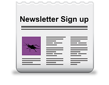 Gym-N-Eat Crickets Newsletter