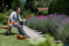 Stihl - background resting linetrimmer.j