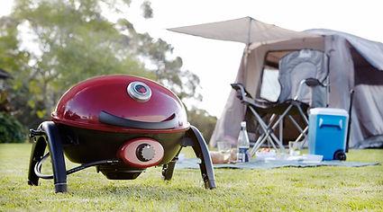 Ziggy camping.jpg