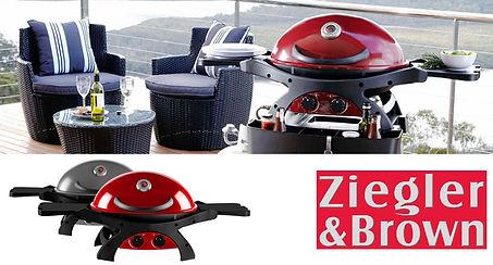 ZieglerBrownTwinGrill2.jpg