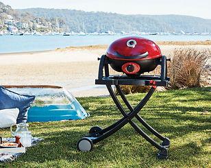 Ziggy-Portable-Beach-Stand.jpg
