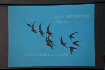 2019 07 03 POURNY Michel Bleu Martinet (