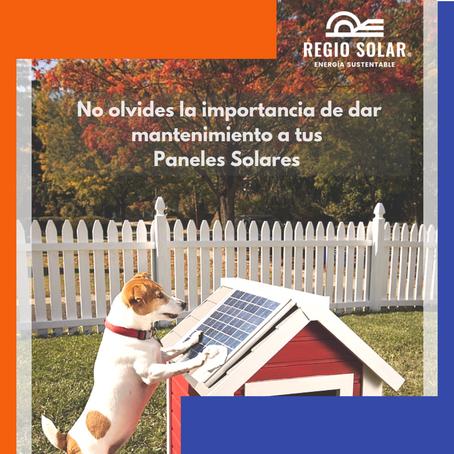 Tus paneles solares y una limpieza continua: Una de las mejores prácticas.