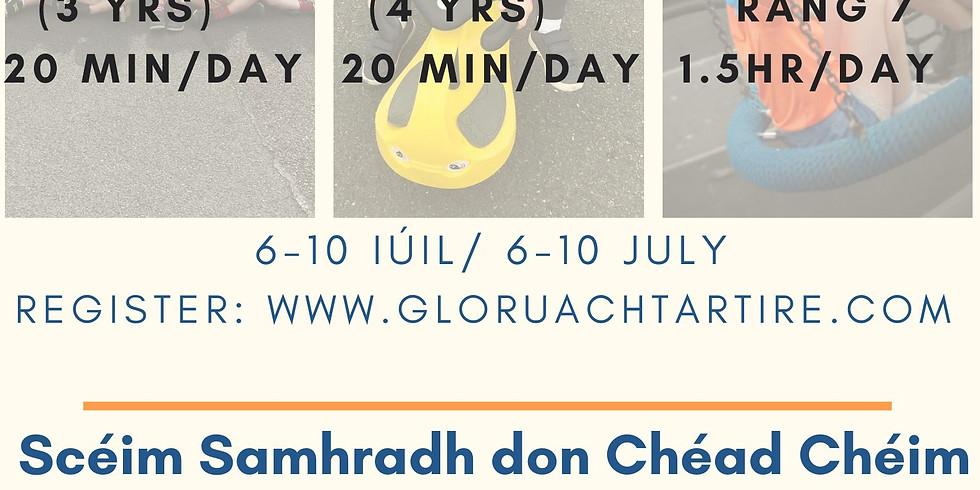 Scéim Samhraidh don Chéad Chéim Eile/ Summer Scheme for the Next Stage