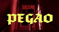Selene, Pegao