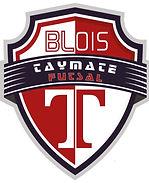 logo futsall.jpg