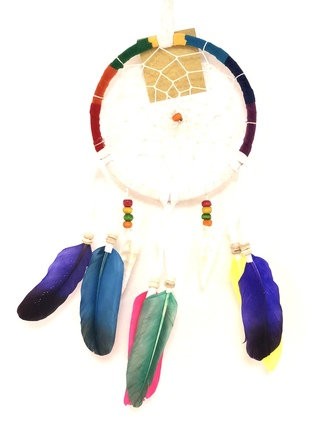 Dream catcher Multi color