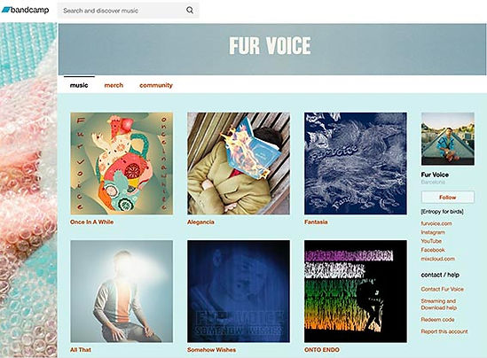 FUR VOICE BANDCAMP.jpg