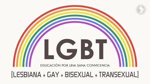 """El término """"comunidad LGBT"""" puede alentar a losestereotipos y resultar excluyente"""