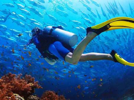 Interesting and Fun Facts about Scuba Diving that will Leave you Stunned