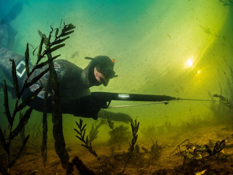 Safety guide for spearfishing