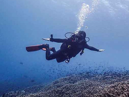 Tips for Drift Diving to Make the Experience the More Memorable