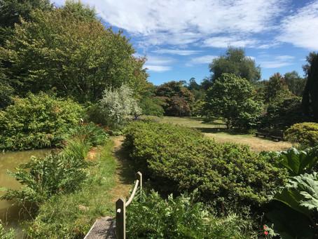 Event Review - High Beeches Garden