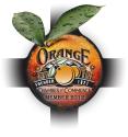 occ virtual logo 2012 - 117x125.png