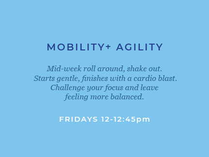 class_descriptions_mobility