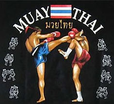 muay thai kick shield fairfax chantilly herndon south riding