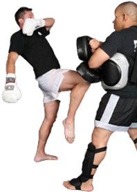 muay thai pads knee kickboxing south riding middleburg nova manassas