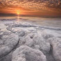 חוף עין גדי