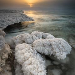 החוף האבוד