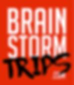 BrainStormTrips.com Logo.png