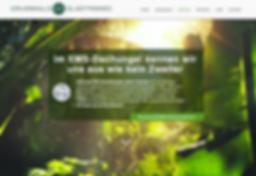 GRUENWALD ELECTRONIC Homepage
