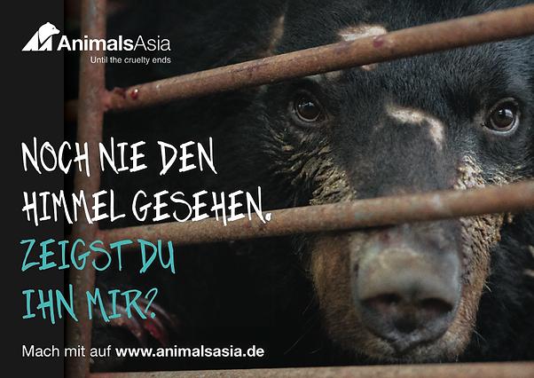 Freier Top Texter Anzeigen-Texte Mondbären Animals Asia