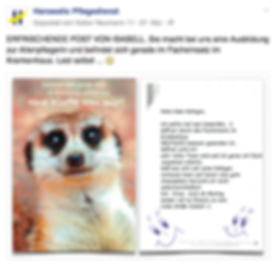 Freier Top Texter Facebook Fanpage Post HANSEATIC PFLEGEDIENST