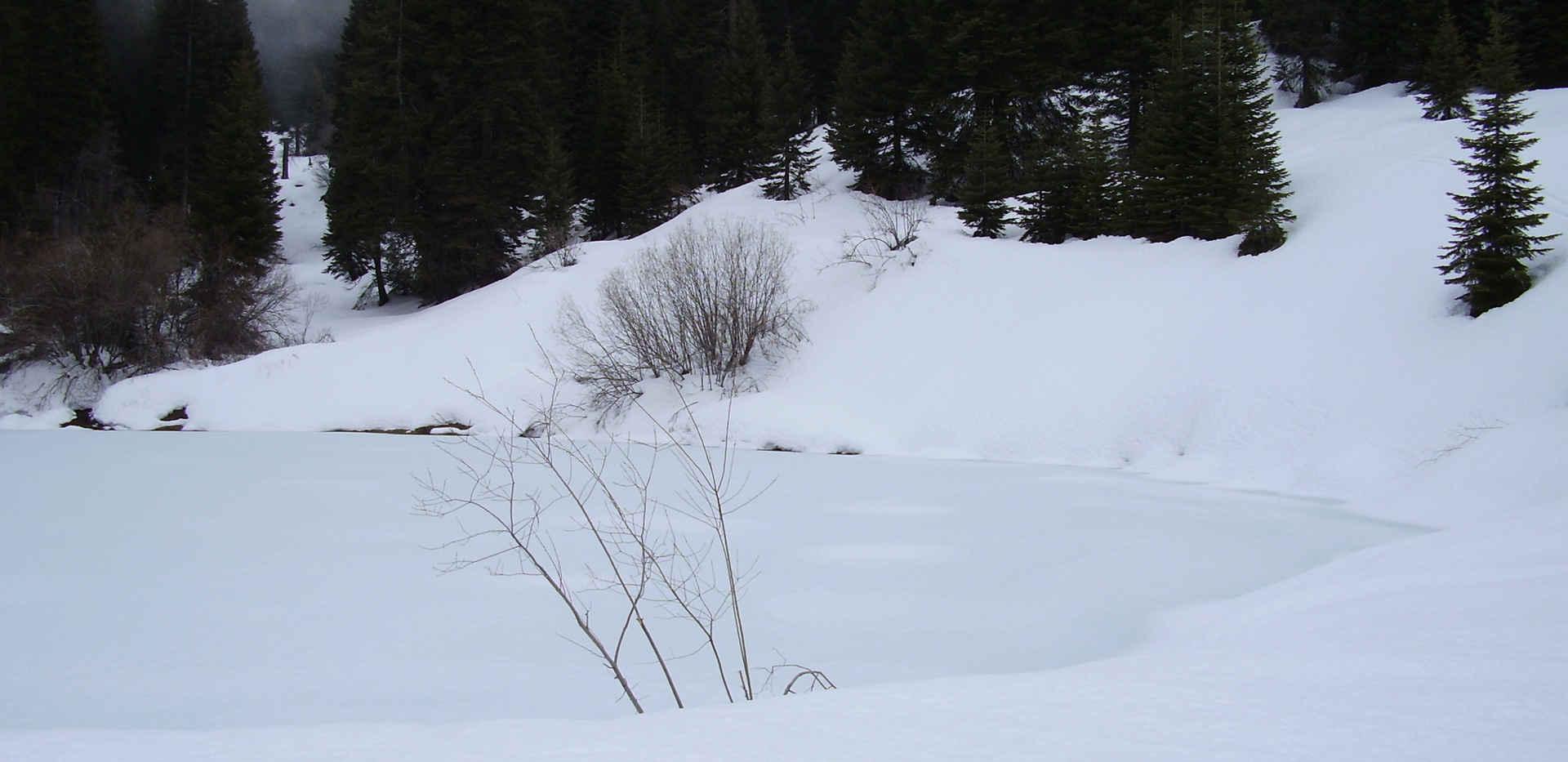 Poppy Lake - Winter