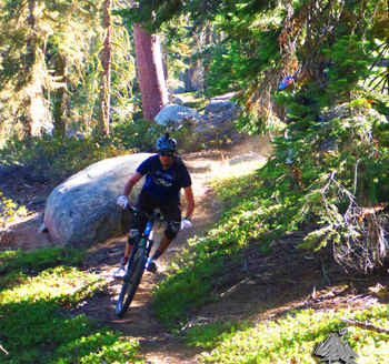 Mountain Biking on the Bear Creek Trail